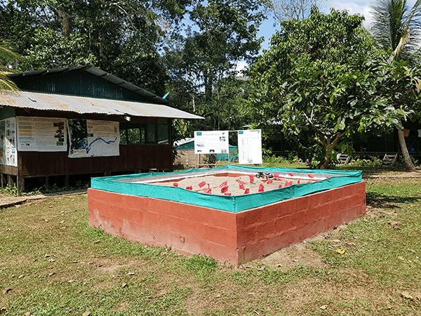 TambopataTaricaya Tour 3