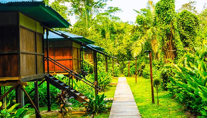 Tambopata Cabin