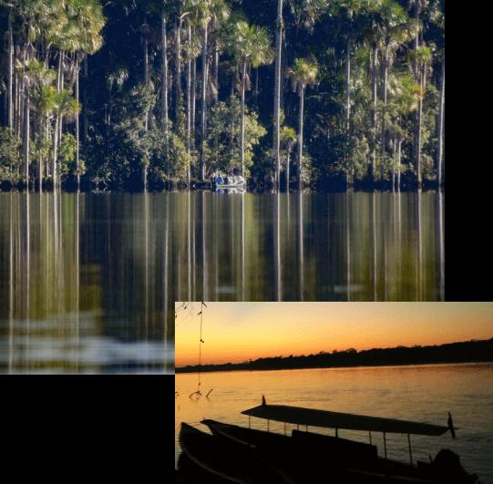 Tambopata Lago Sandoval Tour