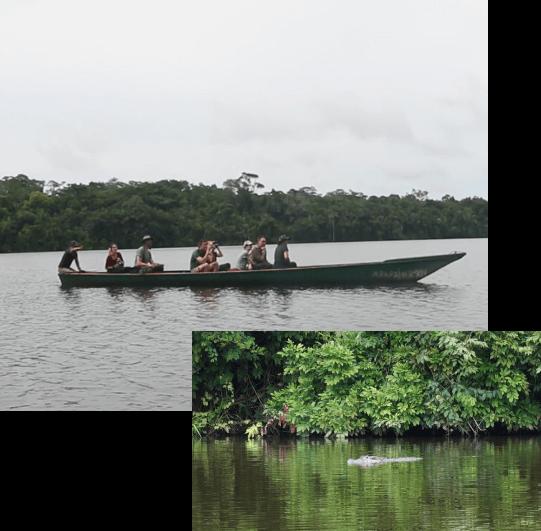 Rio Tambopata Tour