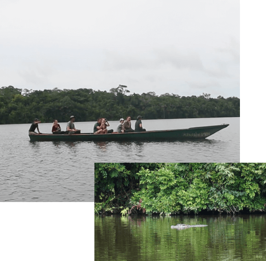 Tambopata River Tour